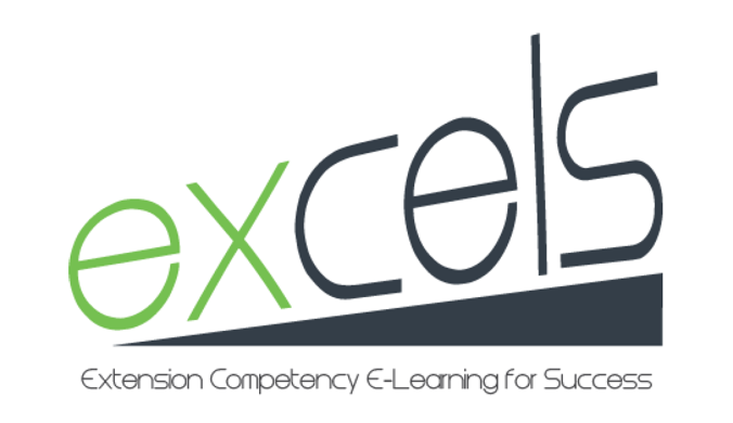 excels   Extension Competency E-Learning for Success